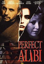 Perfect Alibi Poster