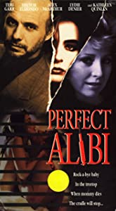 Downloadable psp movie Perfect Alibi [1020p]
