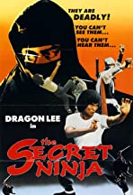 Secret Ninja