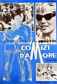 Comizi d'amore (1964)