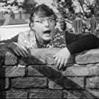 The Gay Dog (1954)