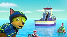 Pups Raise the PAW Patroller/Pups Save the Crows