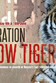 Operation Snow Tiger Poster