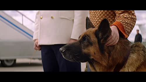 A Dog Named Palma In cinemas in Russia March 18th.