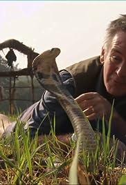 Ten Deadliest Snakes with Nigel Marven