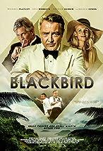 Primary image for Blackbird