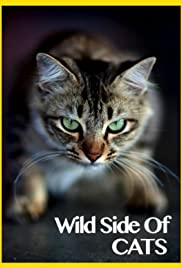 Cat Trainer Mieshelle on Wild Side of Cats Nat Geo documentary