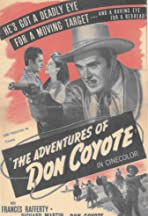 The Adventures of Don Coyote