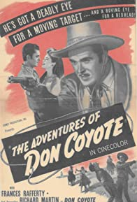 Primary photo for The Adventures of Don Coyote