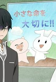 Handa-kun and the Frog/Handa-kun and the Stalker Poster