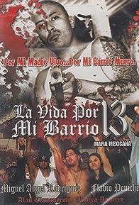 Primary photo for La vida por mi barrio 13 (Mafia mexicana)