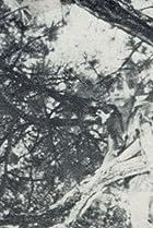 Carl R. Botefuhr