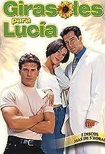 Girasoles para Lucía