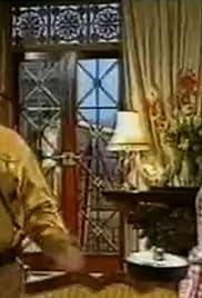 Heil Honey I'm Home! Poster - TV Show Forum, Cast, Reviews