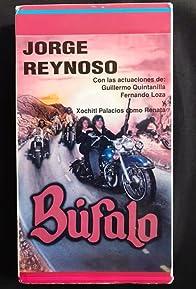 Primary photo for Bufalo