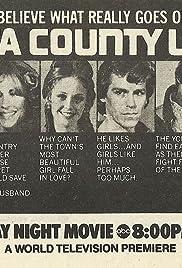 Delta County, U.S.A. Poster