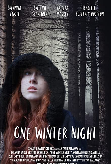 Film: One Winter Night
