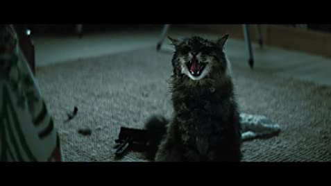 Image result for pet sematary images