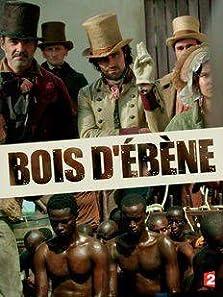 Ebony: The Last Years of the Atlantic Slave Trade (2016 TV Movie)