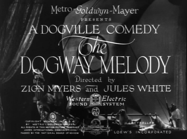 dogville movie download moviescounter