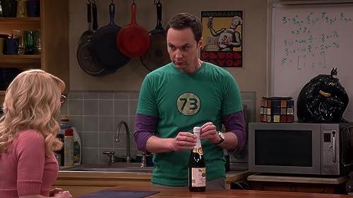 The Big Bang Theory: Fetus Friendly Festival Of Fun