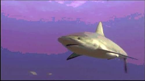 Trailer for Ocean Wonderland