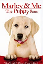 'Marley & Me: The Puppy Years' Goes to Training Camp