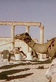 Ruins of Palmyra and Baalbek Poster