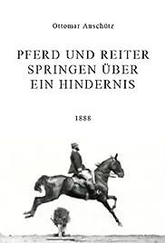 Pferd und Reiter Springen über ein Hindernis(1888) Poster - Movie Forum, Cast, Reviews