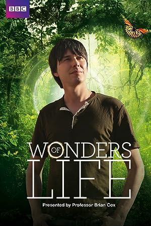 Where to stream Wonders of Life