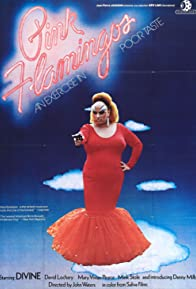 Primary photo for Pink Flamingos