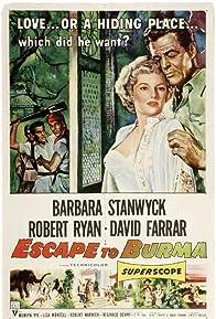 Primary photo for Escape to Burma