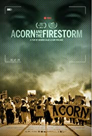 ACORN and the Firestorm Poster