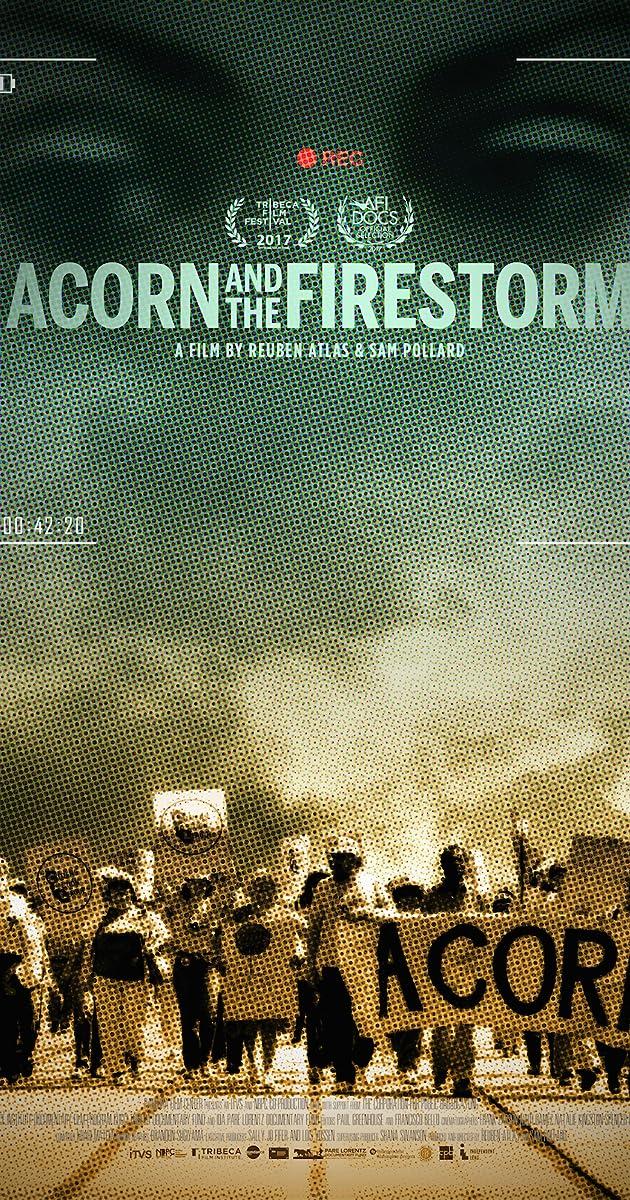 ACORN And The Firestorm 2017 IMDb