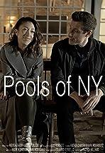 Pools of NY