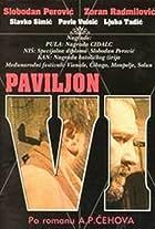 Paviljon broj VI