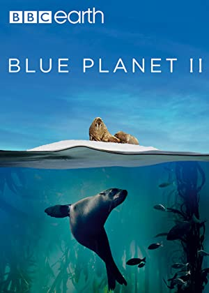 Blue Planet II : Season 1 Complete UHD BluRay 720p