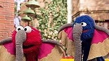 Grover's Street Safari