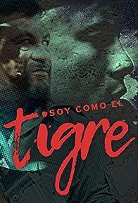 Primary photo for Soy como el Tigre