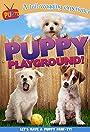 Puppy Playground