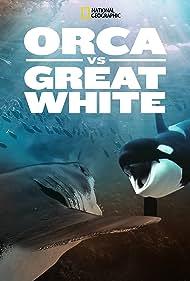 Weißer Hai vs. Killerwal