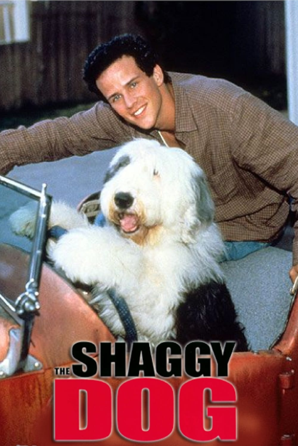 Scott Weinger in The Shaggy Dog (1994)