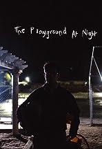 The Playground at Night