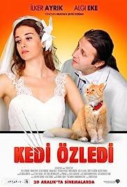 Kedi Özledi(2013) Poster - Movie Forum, Cast, Reviews
