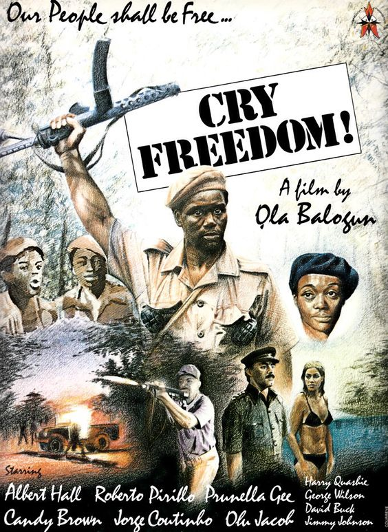 Cry Freedom ((1981))