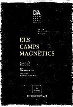 Els camps magnètics
