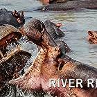 River Rivals (2020)