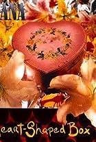 Nirvana: Heart Shaped Box