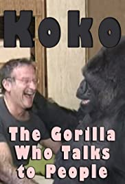 Koko: The Gorilla Who Talks to People Poster
