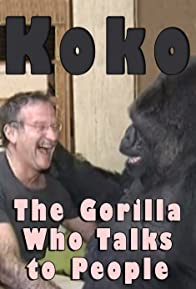 Primary photo for Koko: The Gorilla Who Talks to People